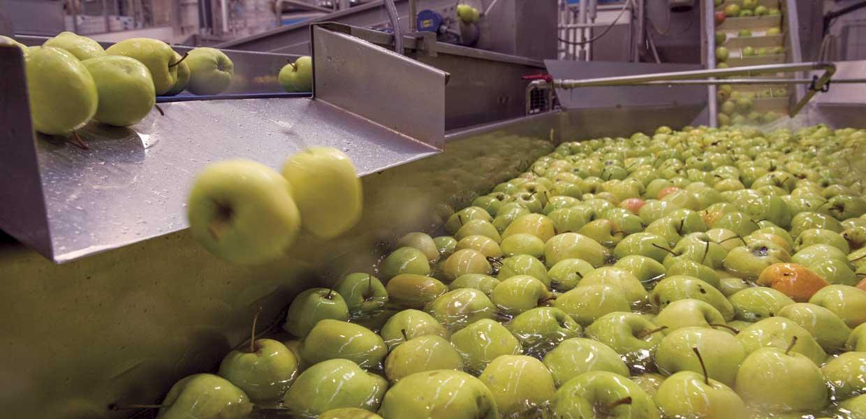 Ad Chini passione per la frutta
